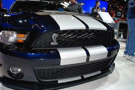 FordShelbyGT500blueNose.jpg