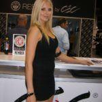 SEMA 2011 Booth Babes (31)