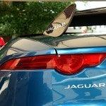 Jaguar Project 7 7