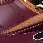 Spyker B6 Venator Spyder top detail
