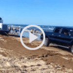 Beached Tractor Trailer Rescued by Heroic F-150