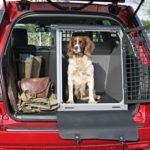 pet transport 01