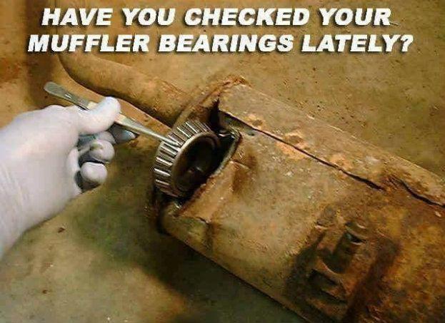 Muffler Bearings