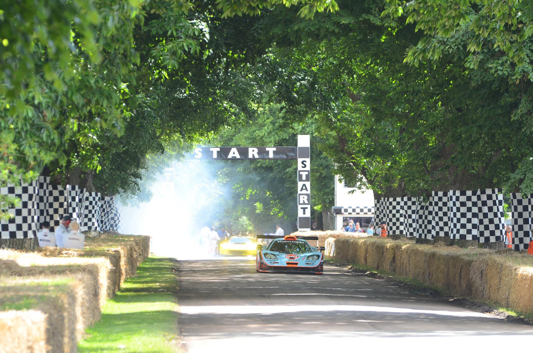 McLaren F1 GTR Longtail 2