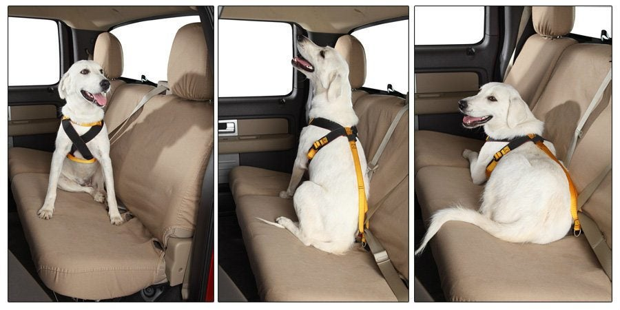 pet-safety-belts