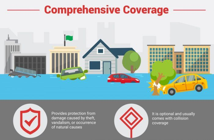 All The Different Types Of Car Insurance Coverage