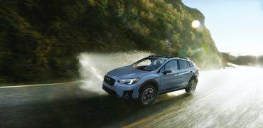 Subaru Crosstrek Dog Park Commercial