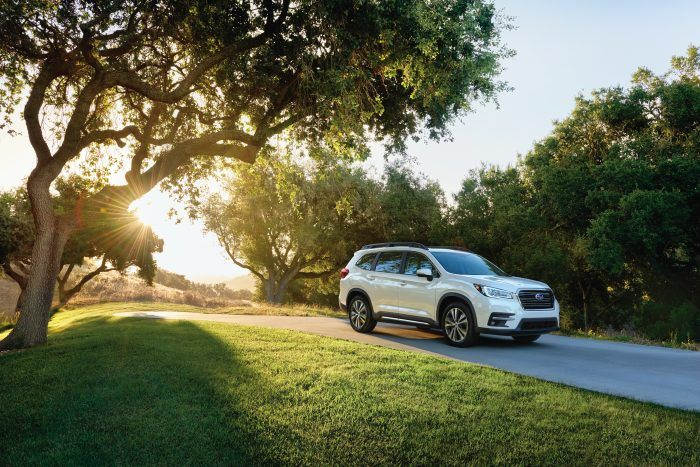 2019 Ascent Limited 1