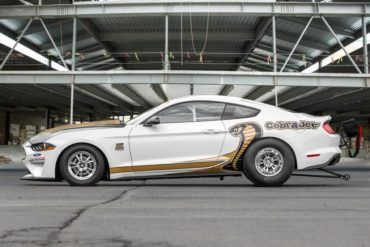 Mustang CJ Profile