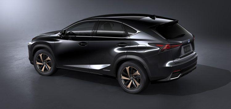 2018 Lexus NX 015 C5674C2D1684F384038C5124F60675D4E78CABF6