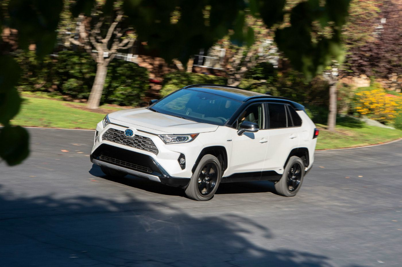 2019 toyota rav4  right size fits all