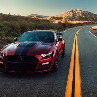 DSC03599 2 200x200 - 2020 Mustang Shelby GT500: One Slick Snake