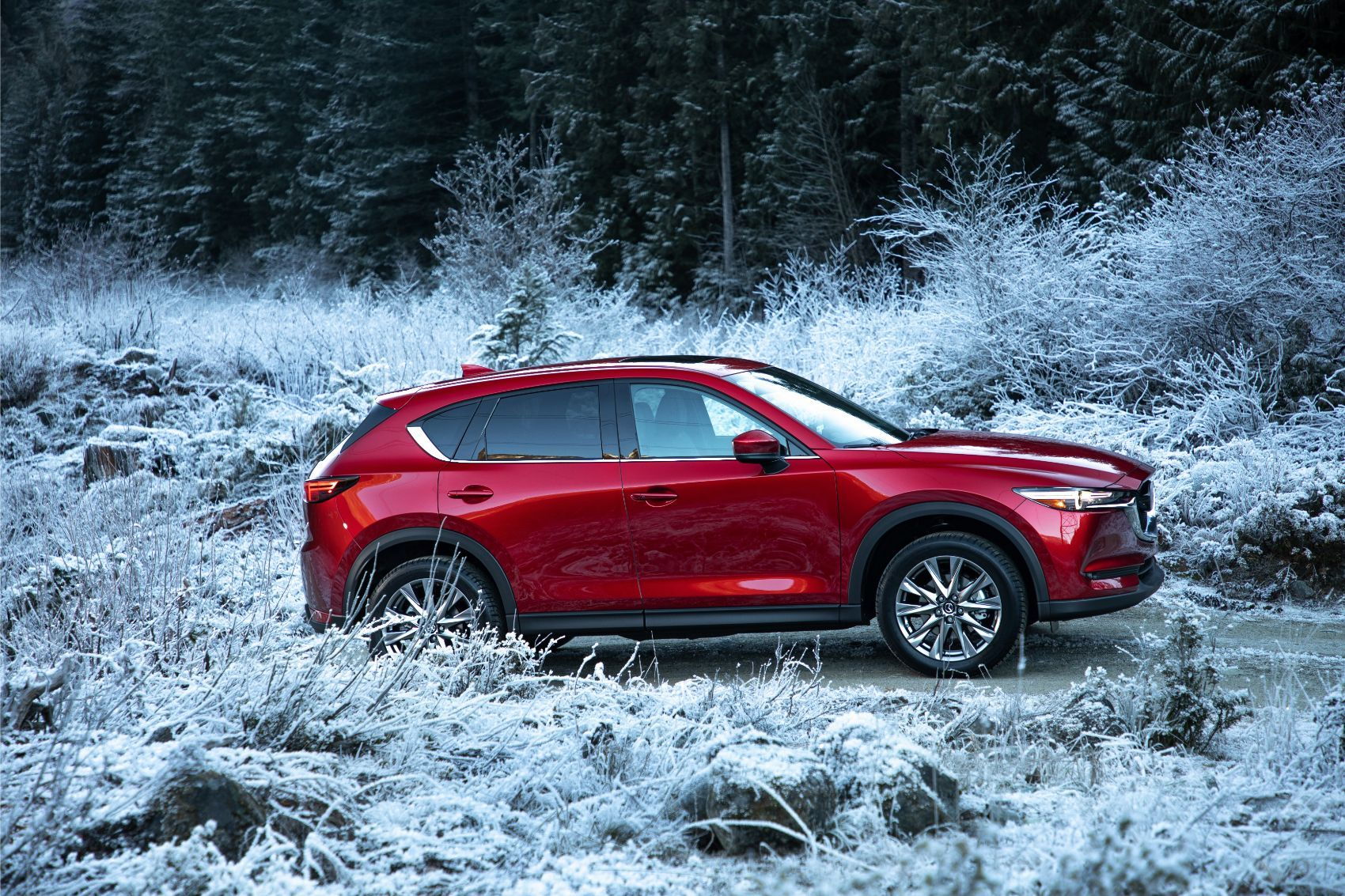 Extending your Mazda warranty can help protect your CX-5 or other Mazda vehicles.