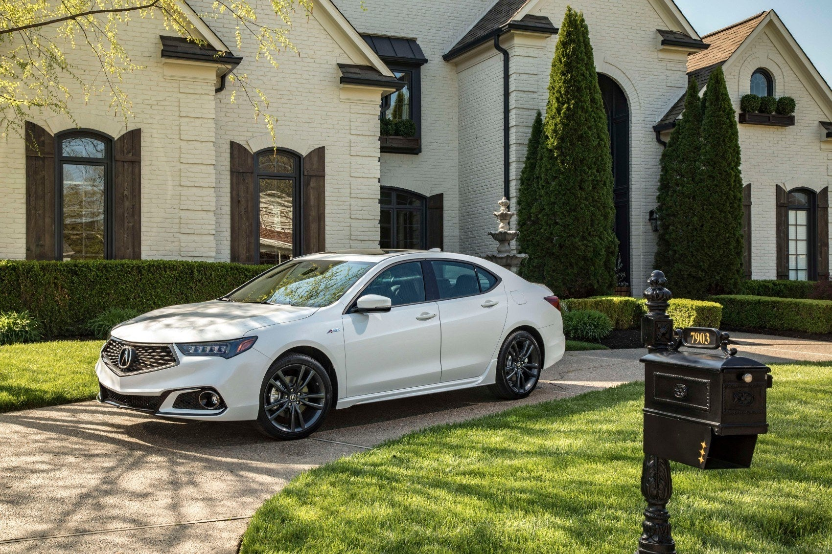 2020 Acura TLX: Letting Those Colors Fly!