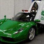 Chilean Green Enzo