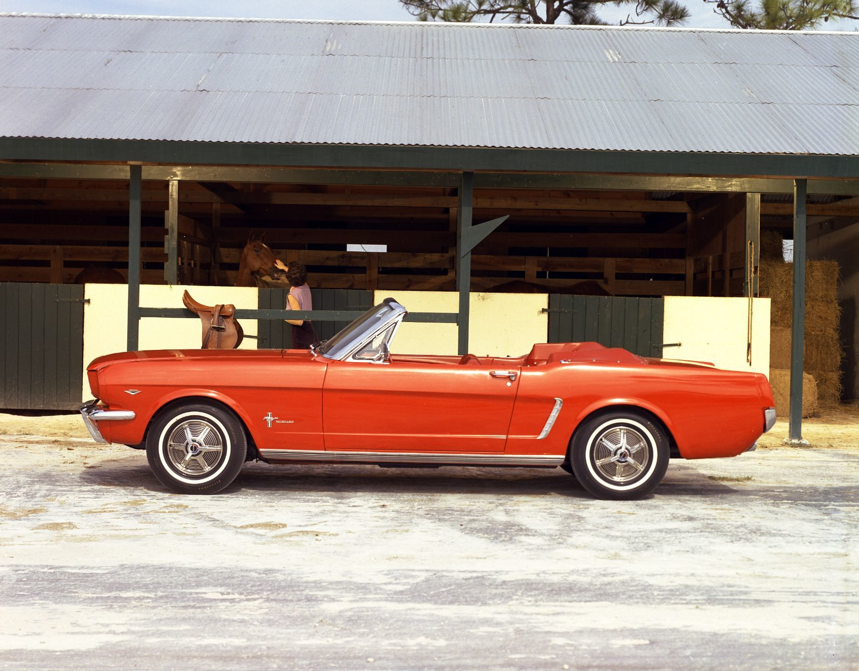 Enjoy This Gallery of Orange Ford Mustangs Just Because