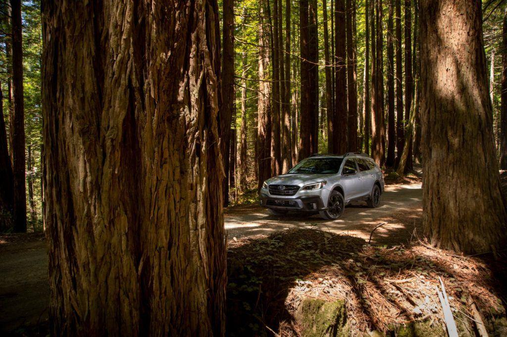 2021 Subaru Outback 19